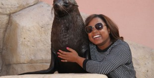 Atlantis, The Palm now houses South African sea lions