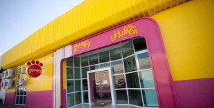 Pet daycare in Dubai