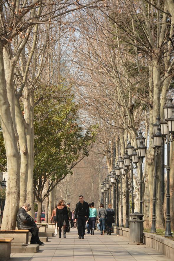 Shota Rustaveli Avenue