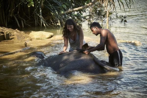 Water For Elephants in Sri Lanka