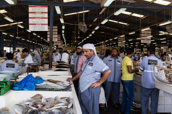 deira-fish-market-19