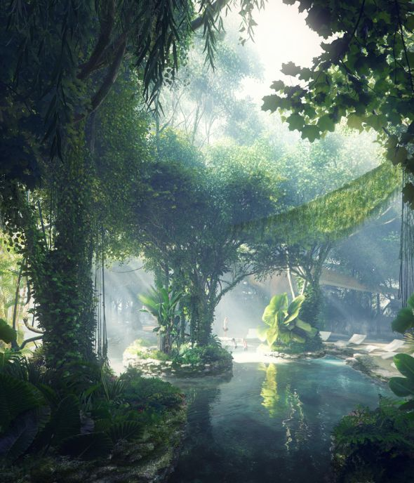 rosemont rainforest