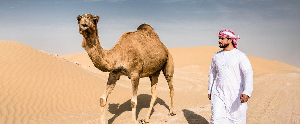 Dubai residents have begun a week long trek into the desert on camel trek dubai altavistaventures Choice Image