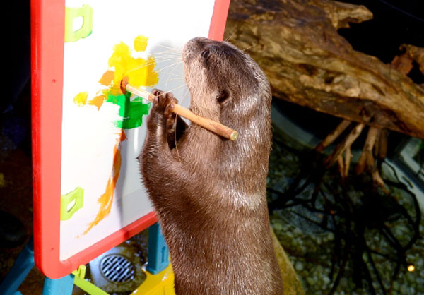 Great Otter Art Exhibition
