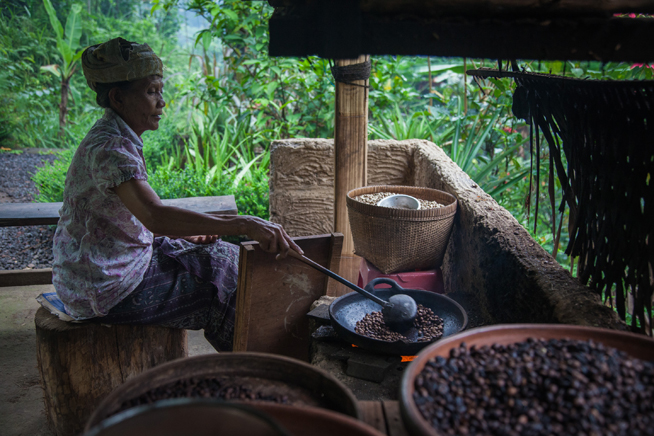 Production of the Kopi Luwak in Indonesia