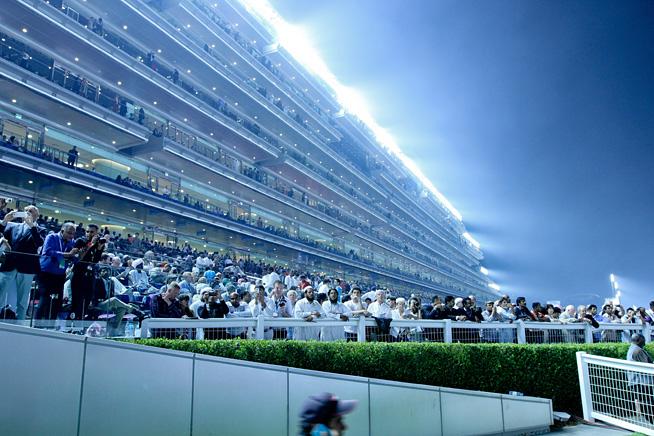 Dubai World Cup 2014, Meydan Racecourse