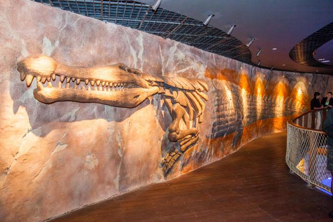King Croc at Dubai Aquarium