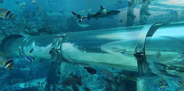 Aquaventure ranked eighth best waterpark