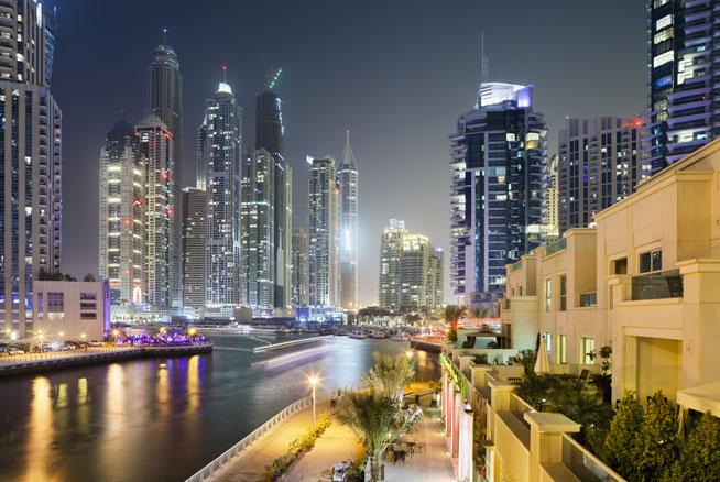 Dubai Marina dog walking backlash