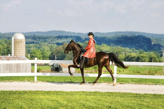 Kentucky - world's best horseriding holidays