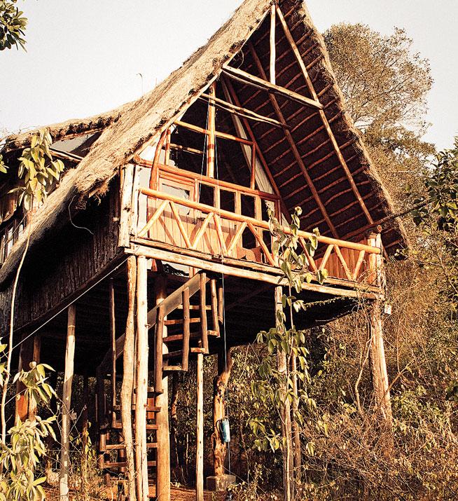 Nairobi - best treehouse holidays