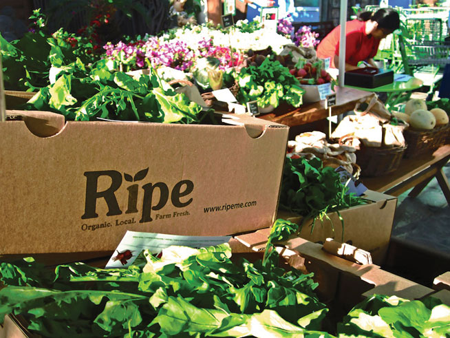 Ripe Market returns, at Zabeel Park