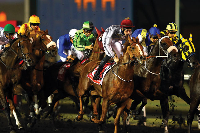 Things to do in Dubai 2015 special - Dubai World Cup
