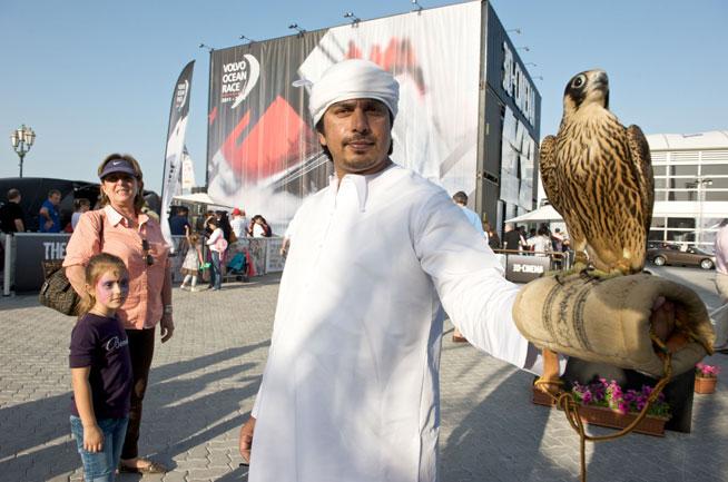 Falconry Festival in Dubai
