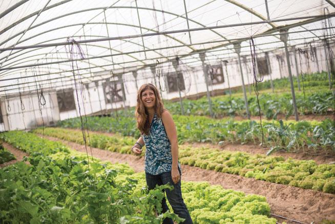 Greenheart Organic Farms - organic food delivery in UAE
