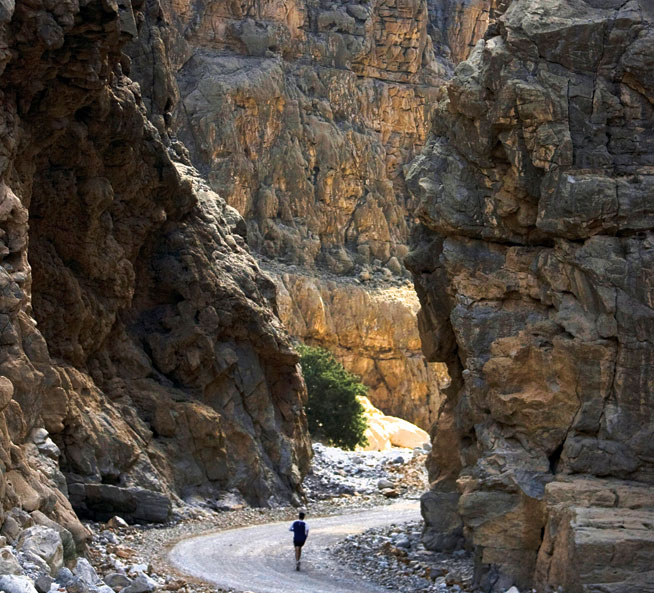 Wadi Bih Run - endurance races in UAE