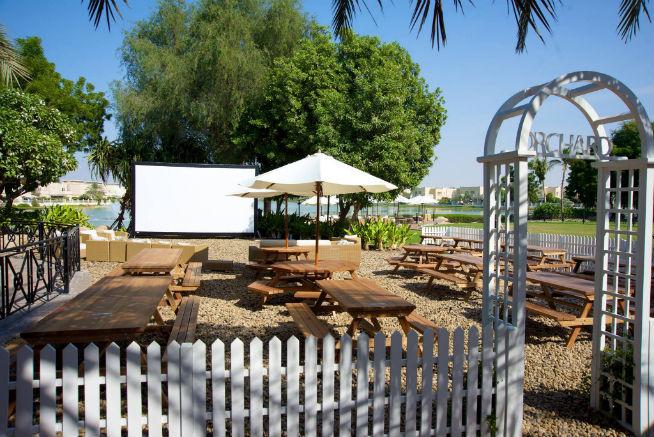Reform outdoor cinema