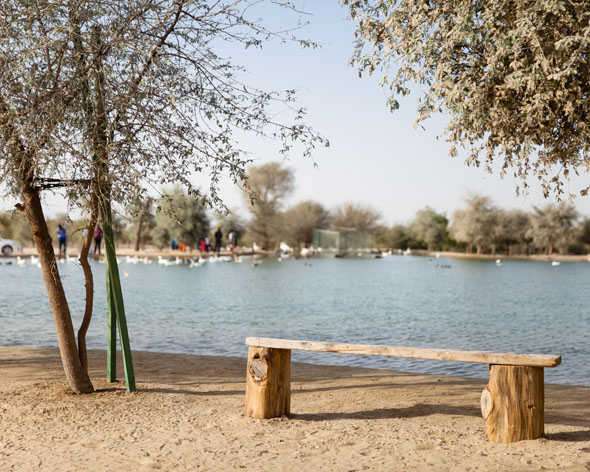Camping in the UAE and beyond: Here are six places to ...
