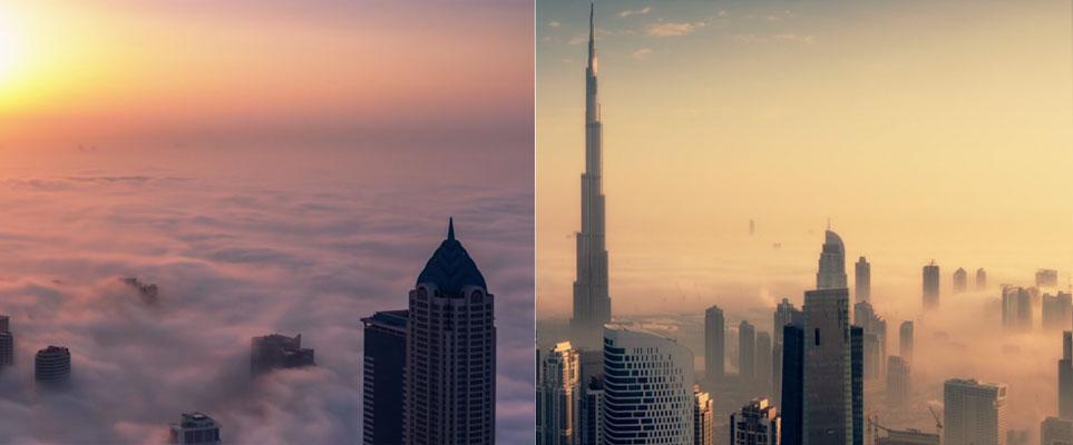 fog-story