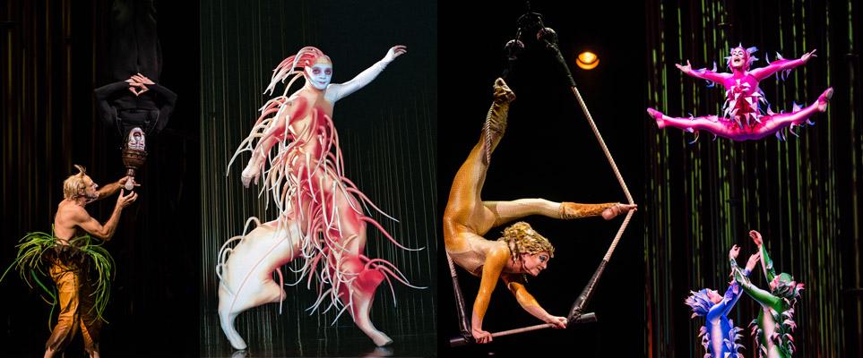 Cirque du Soleil Dubai