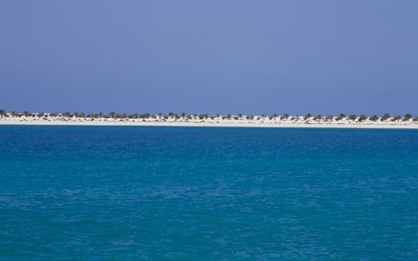 abu-dhabi-beach-1