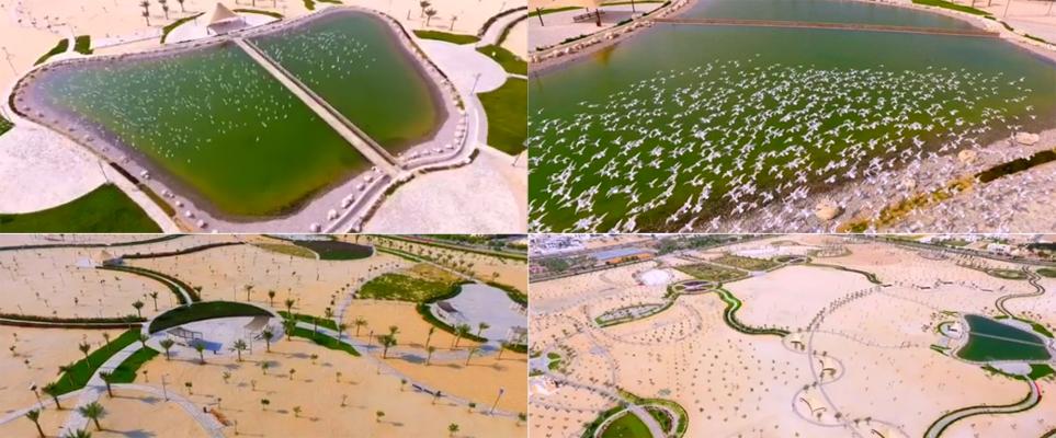 quran-park-featured