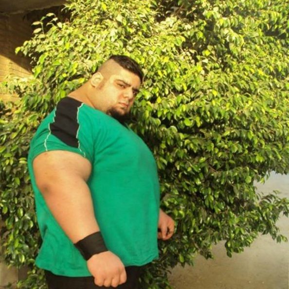 persian hulk