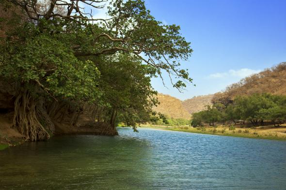 Wadi Darbat
