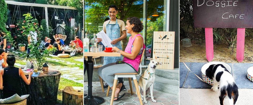 Ruff Guide: 16 pet-friendly cafes and restaurants in Dubai - What's