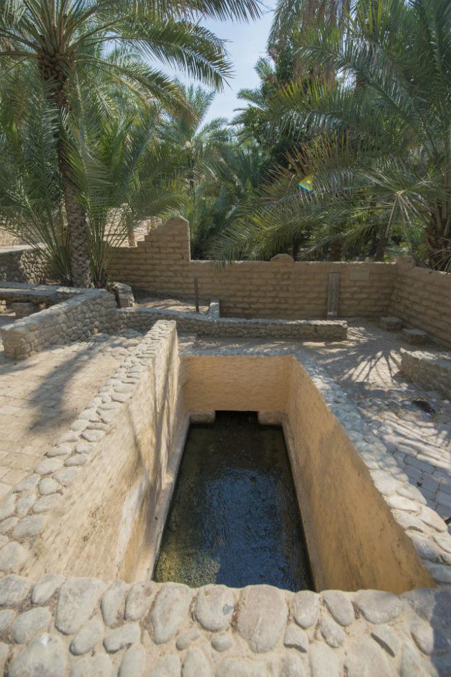 Al-Ain-Oasis-New-010