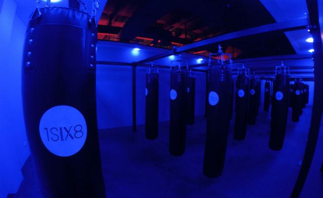 1six8 boxing