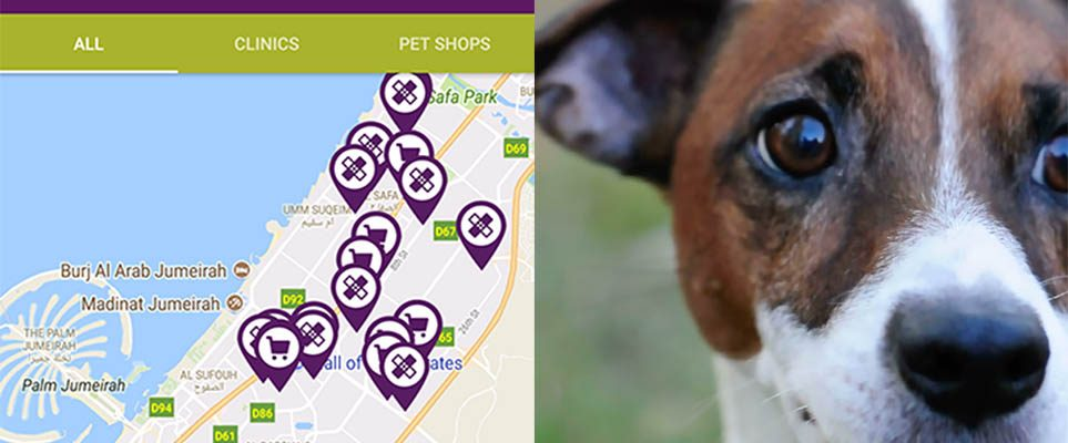 Did you know: Dubai Municipality has an awesome app for pet