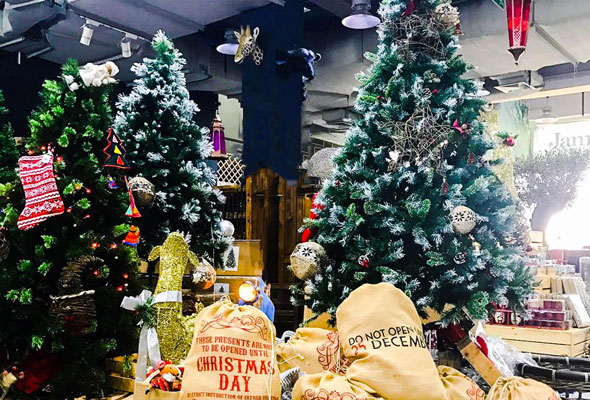Where to buy your Christmas tree in Dubai - What's On Dubai