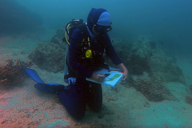 Maisoon underwater painting