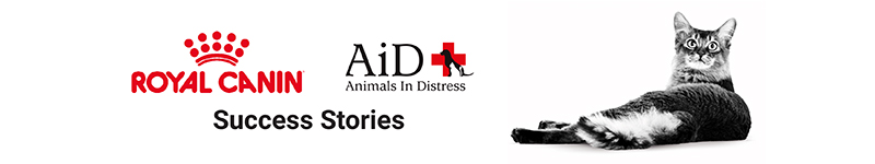 animals in distress new banner