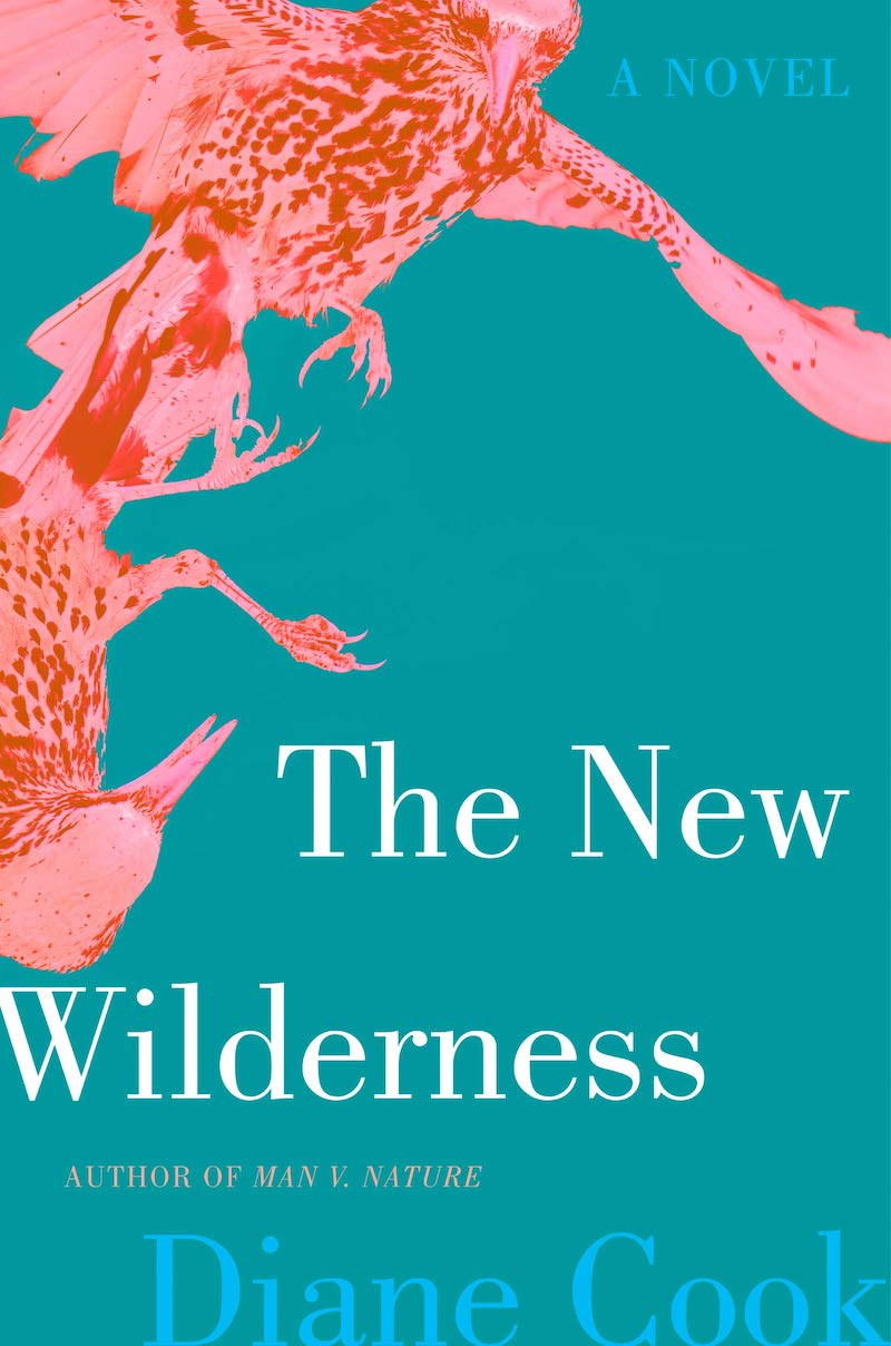 booker prize the new wilderness