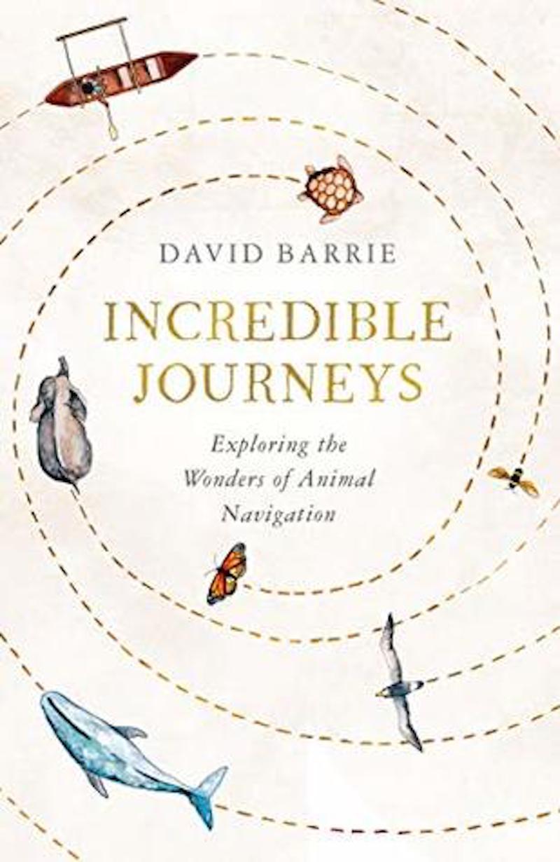 incredible journeys books for christmas