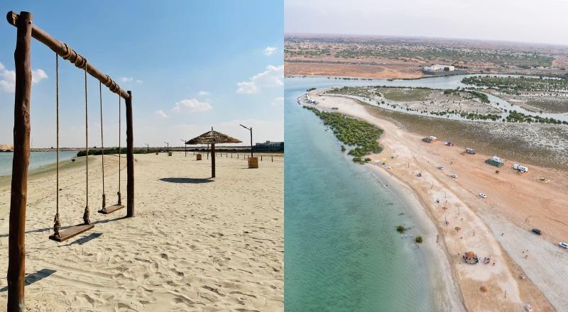 Mangrove Beach UAE