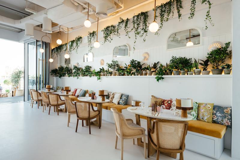 Brunch & Cake new restaurants in Dubai