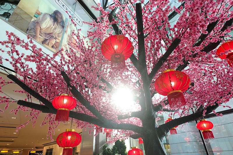 almaryah abu dhabi chinese new year