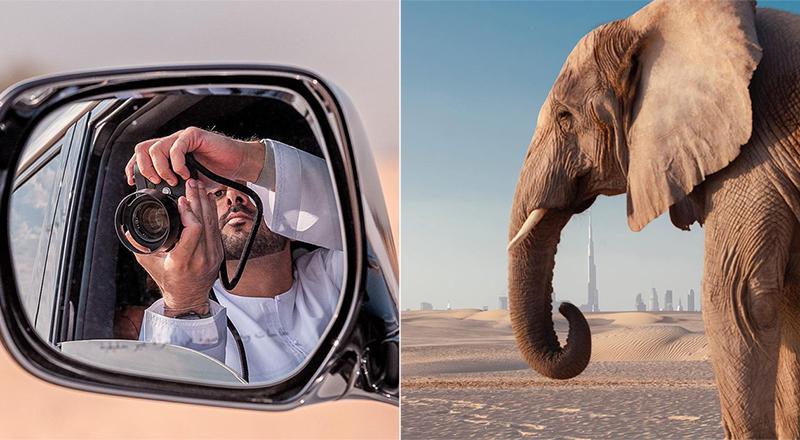 sheikh-hamdan-elephant-insta