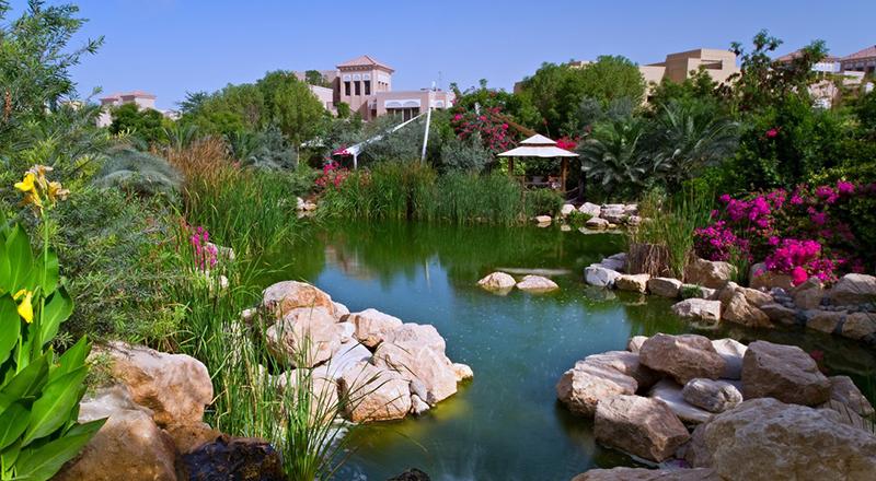 Best garden cafes Dubai